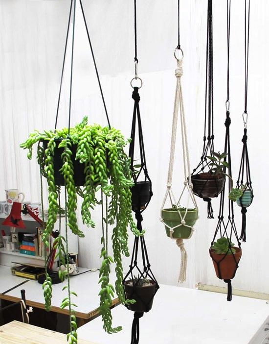 pendurar_plantas1