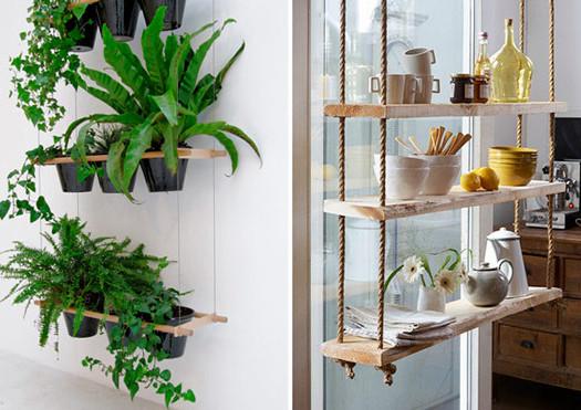 plantes à l'intérieur