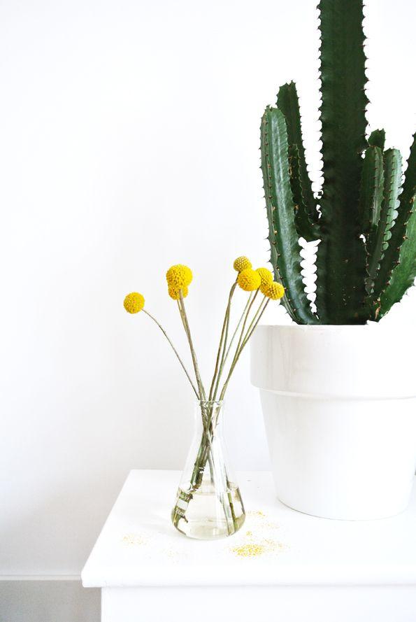 deco tropicale vert et jaune - blog DECOuvrir design