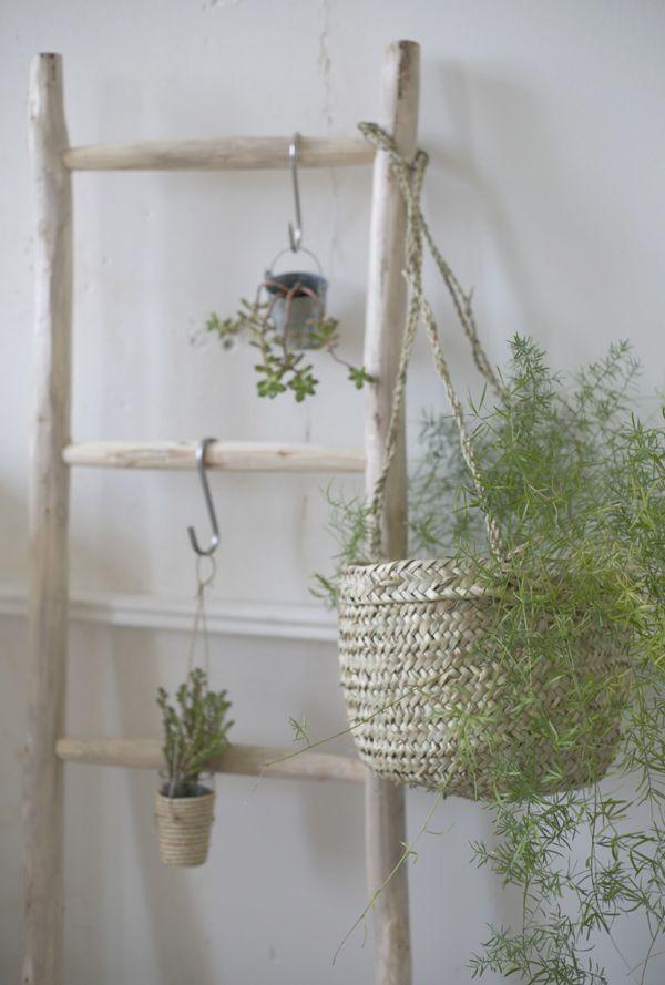Tendance panier cache-pot