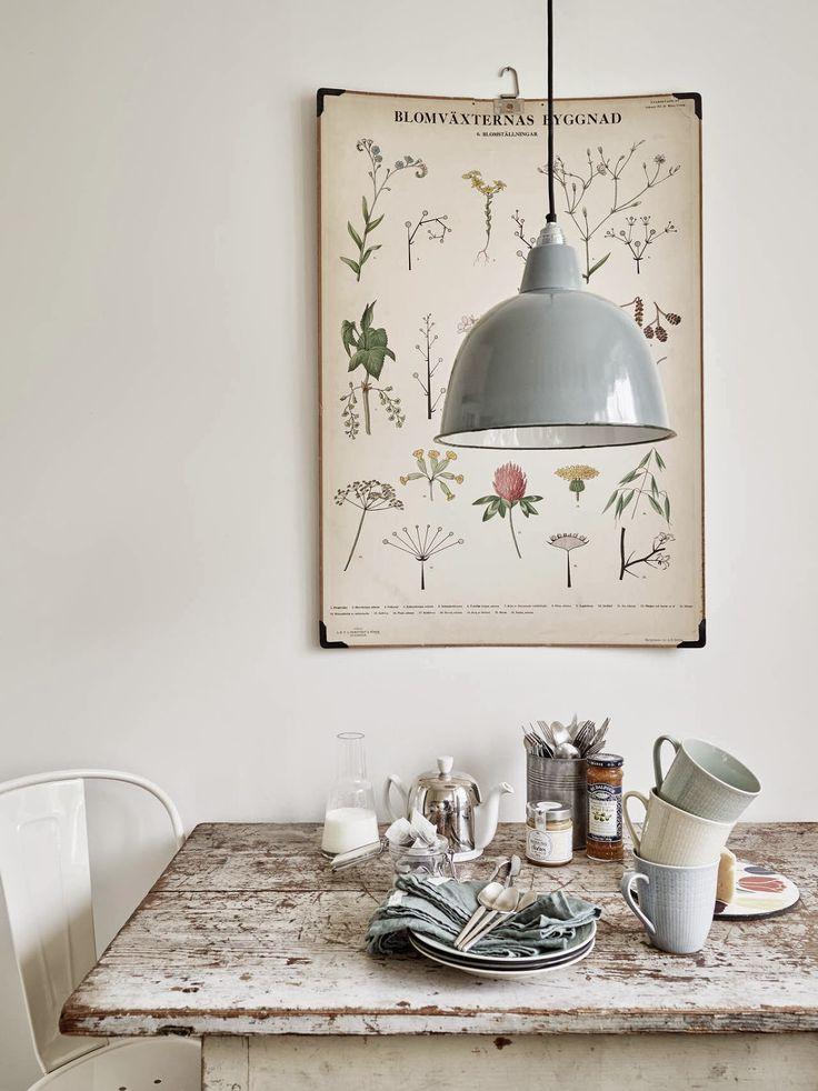 idées-décoration-murale-affiches-vegetales4
