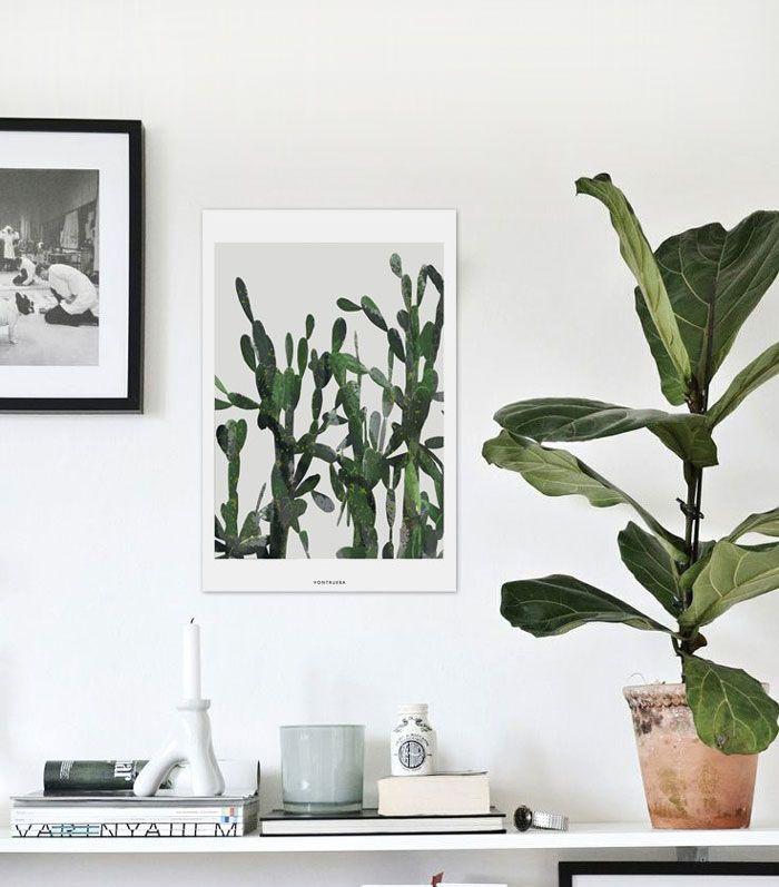 idées-décoration-murale-affiches-vegetales5