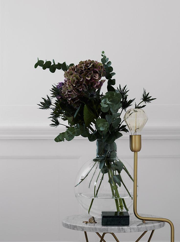 plantes en décoration