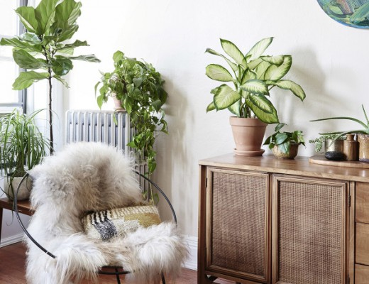 Un superbe appartement Kinfolk a Brooklyn