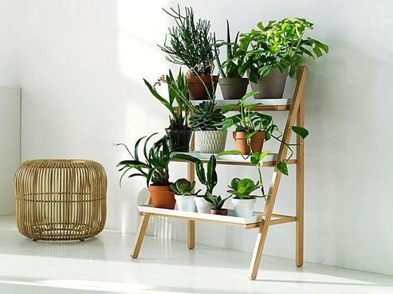 Une étagère échelle Pour Une Déco Végétale Decouvrirdesign