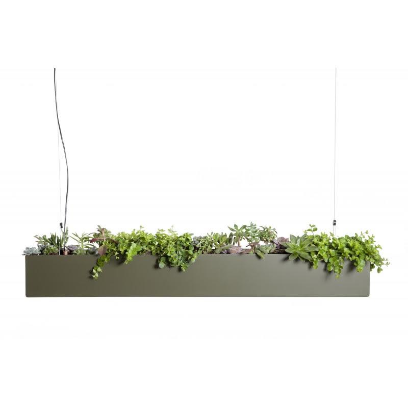 suspensions végétales et lumineuses design deco