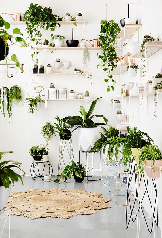 Decoration vegetale mur blog decouvrir design via decoration murale inspiration vegetale