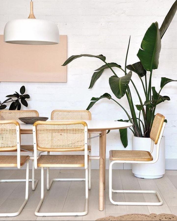 Chaise Design 5 Modles Incontournables